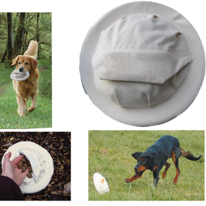 Training frisbee voor hond