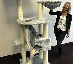 Cat Tree Kilimandjaro de Luxe Light Grey