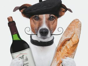 3D Wenskaart French Dog