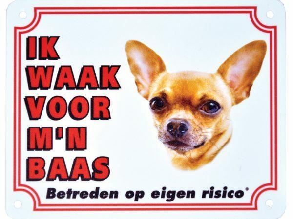 Waakbord S Chihuahua kortharig NL