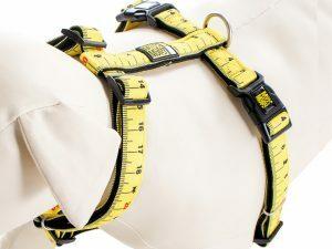 Harnas Ruler XS nek 24-39cm borst 32-40cm