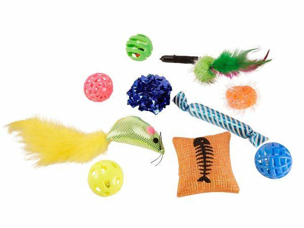 Speelgoed kat Party (10)