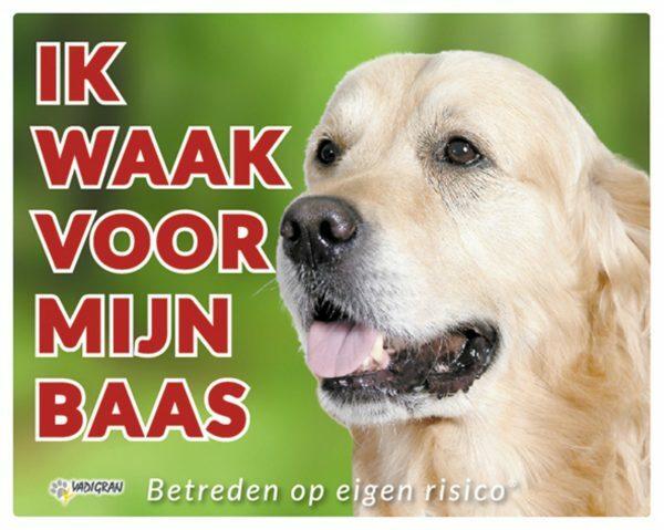 Waakbord foto hond Golden Retriever NL