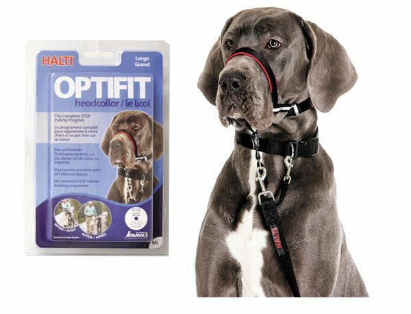HALTI Optifit Headcollar L