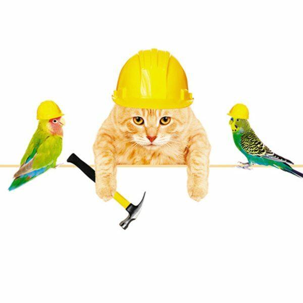 3D Wenskaart Animals Working