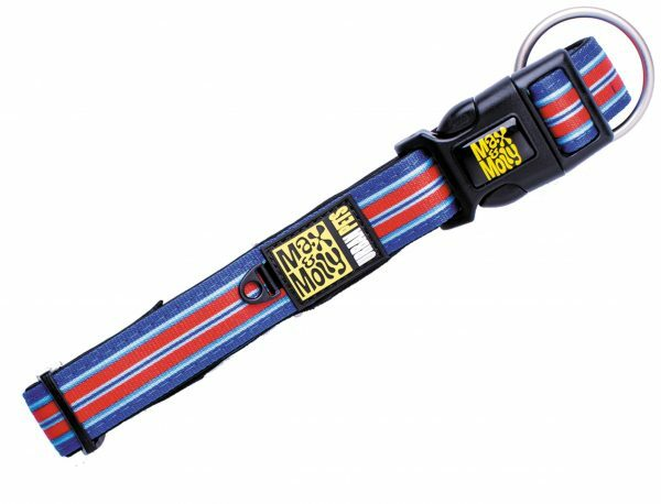 Halsband Hampton Strip Blue L 25mmx39-62cm