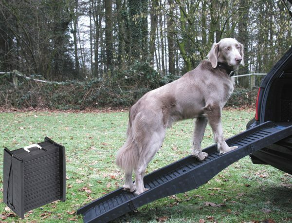 Hondloopplank plooibaar ABS grijs 152x40cm