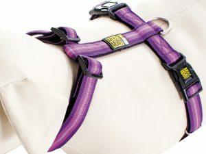 Harnas Booster Purple S nek 30-46cm borst 44-52cm