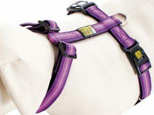 Harnas Booster Purple XS nek 24-39cm borst 32-40cm