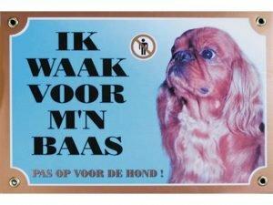 Waakbord gelamineerd King charles Spaniel blauw NL