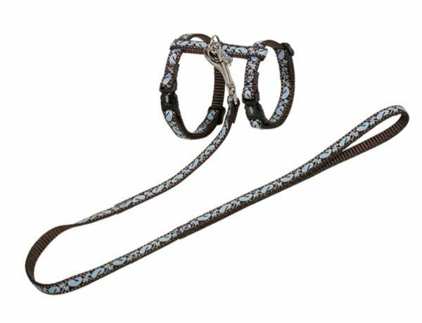 Harnas & leiband kat Oceaan 30-35cm+120cm