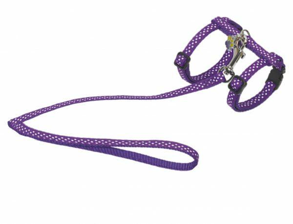 Harnas&leiband kat stip.10mm 30/35cm 120cm paars