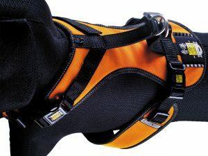HR matrix Splash Orange nek 45-51cm borst 53-61cm