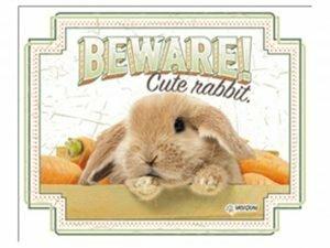 Waakbord konijn EN