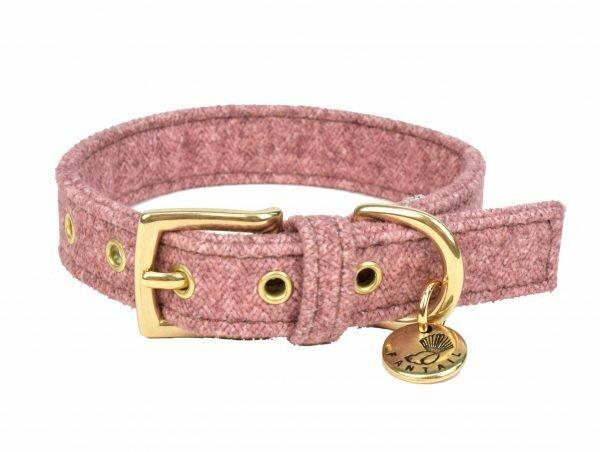 Halsband hond StØv roze 30cmx20mm XXS