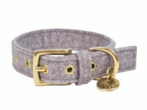 Halsband hond StØv lichtgrijs 45cmx20mm M