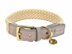Halsband hond Tau grijs 60cmx25mm XXL