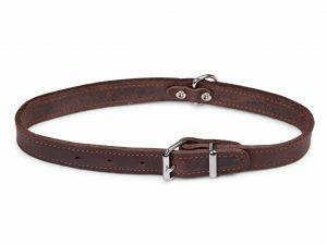 Halsband geolied leder bruin 52cmx22mm L