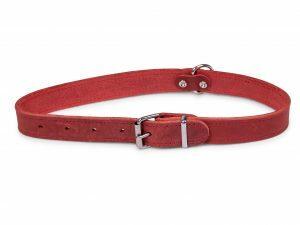 Halsband geolied leder rood 60cmx25mm XL