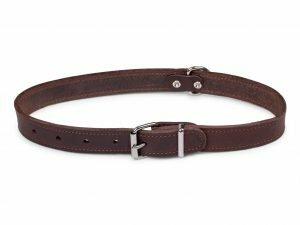p12097  16180 halsband hond geolied leder bruin 70cmx30mm xxl 1
