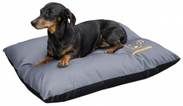 Bodyguard Elegant Pillow S Grey