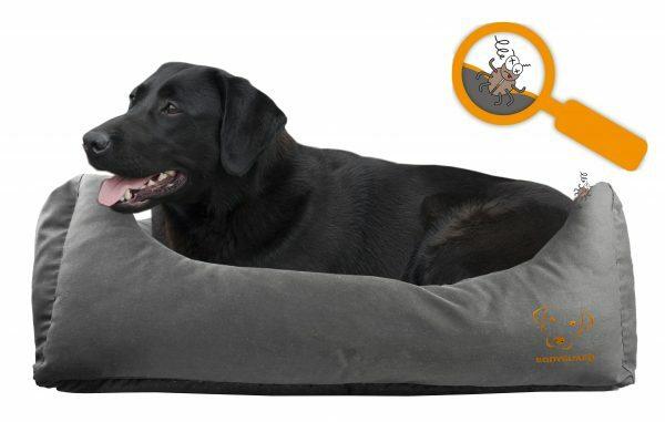 Bodyguard Sofa Bed S Grey