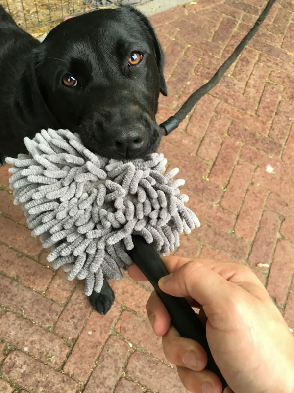 Doggy Dry Paw Cleaner