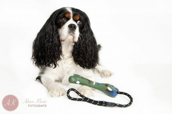 Hunting Dog The Bone 17cm