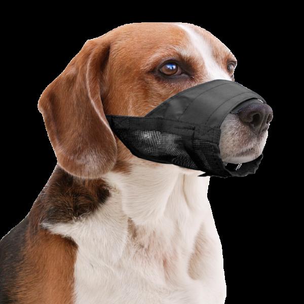 Pawise Muzzle Adjustable XS