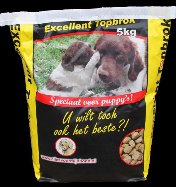 Topbrok Excellent Puppy