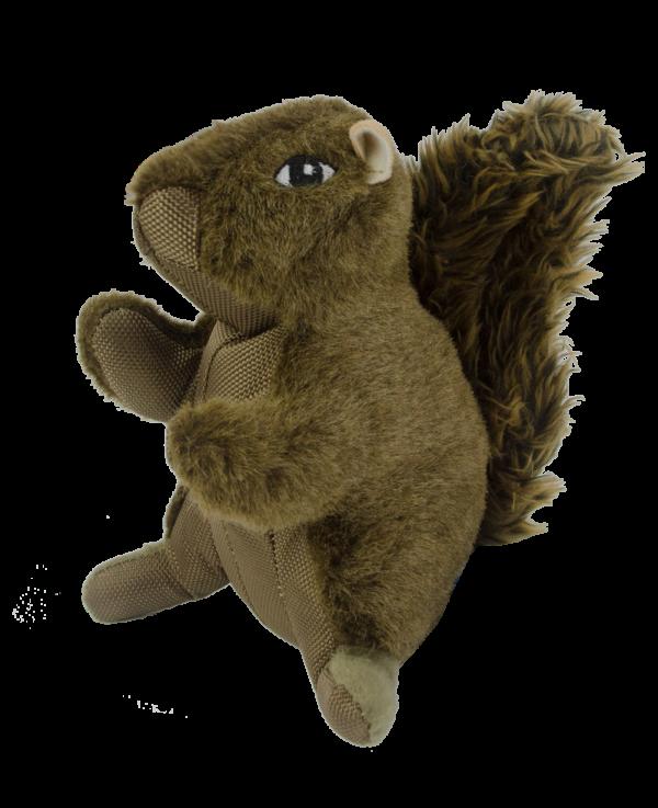Wild Life Dog Squirrel (Eekhoorn)
