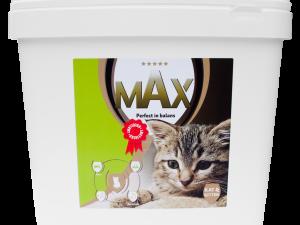 Max Kat en Kitten