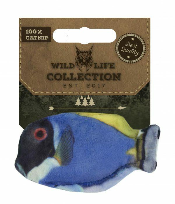 Wild Life Cat Blue Tang (Blauwe Doktersvis)
