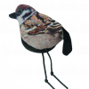 Wild Life Cat Sparrow (Mus)