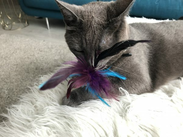 Wooly Luxury Feather Dream Cork Purple