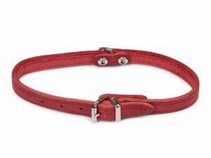Halsband geolied leder rood 32cmx12mm XS
