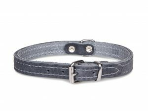 Halsband geolied leder grijs 52cmx22mm L