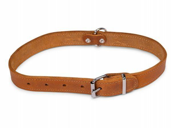 Halsband geolied leder cognac 60cmx25mm XL