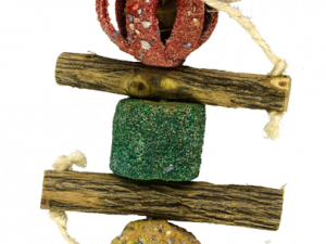Birrdeeez Coral Ball Sekelbos Puzzle Bird Toy