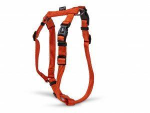 H-Harnas Classic Nylon oranje 56-77cmx25mm L