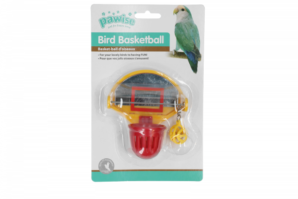 Bird Scoot the ball