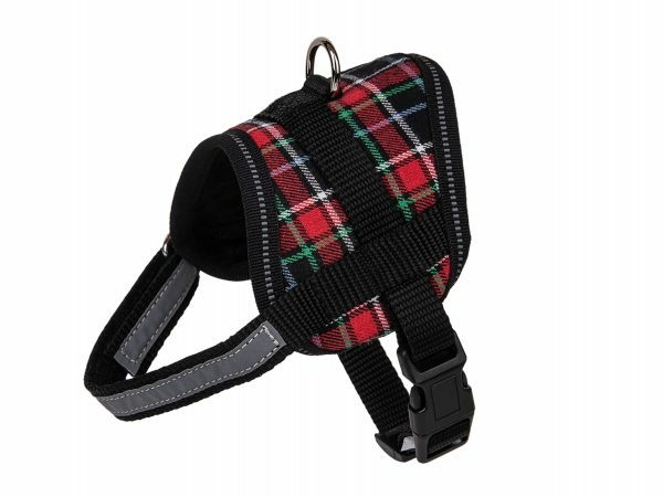 Borsttuigje hond Schot rood 40cm S
