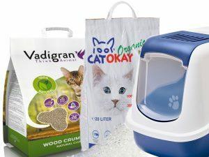 Kattentoilet en zindelijkheid